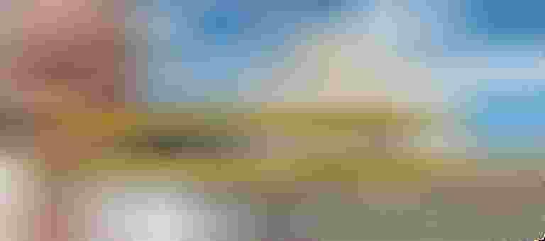 Risultati immagini per papa francesco milano